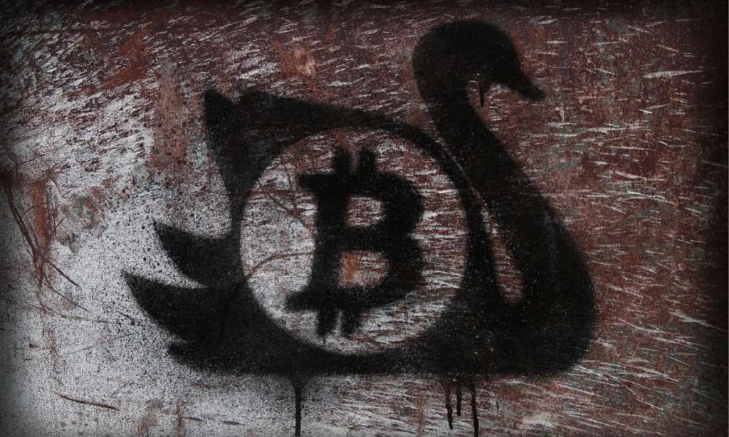 Is Bitcoin a Black Swan?